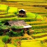 Khau Pha – destination charmante pour les backpackers